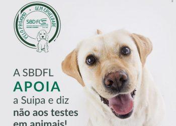 A SBDFL diz NÃO aos testes em animais e SIM à SUIPA